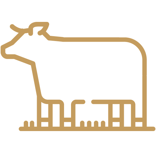 bend beef icon